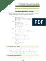 UD 1.La Forma.TEG I.12-13