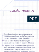A Questao Ambiental