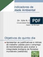 Bioindicadores de Qualidade Ambiental V