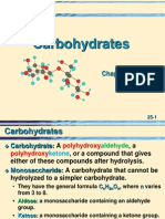 25 Carbohydrates
