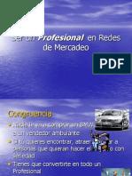 Profesional en Redes