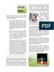 Pta Gruesa Chatty Report 084