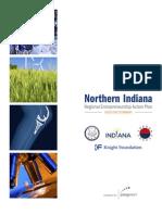 REAP Executive Summary-Northern Indiana