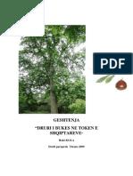 Geshtenja, Druri i Bukes Ne Token Shqiptare
