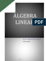Libro 1 Jcdelacruz Algebra Lineal