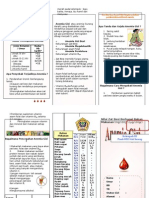 Leaflet Anemia Gizi