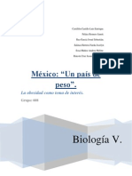 Mexico Un Pais de Peso