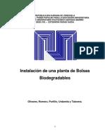 FACTIBILIDAD Bolsas Biodegradables