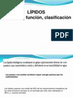 Estructura y clasificación de Lípidos 1