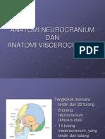 ANATOMI NEUROCRANIUM