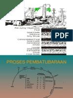 PROSES PEMBATUBARAAN