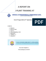 SIFL Training Report