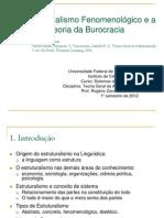 Aulas 27, 28, 29 e 30 - Estruturalismo e Burocracia