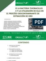 OBTENCIÓN DE LA BATERÍA THIOBACILLUS FERROOXIDANS Y LA UTILIZACIÓN DE ELLA EN EL PROCESO DESCONTAMINASTE EN LA EXTRACCIÓN DEL ORO.