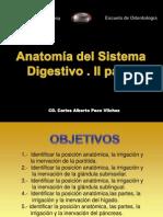 Anatomía del sistema digestivo II parte-dr paco