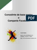 Cunostinte de Baza Pentru o Campanie Facebook - eBook
