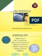 Género Bordetella spp