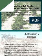 Diagnostico del Sector Vitivinícola del Marco del Jerez , 2011.