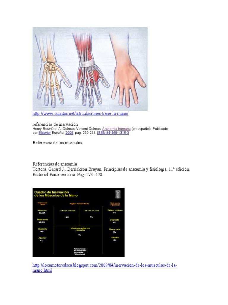 Biomecanica de La Mano (1)