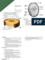 ECM 206 CHAPTER 4 Timber