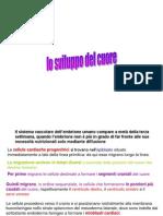 SS Sviluppo Del Cuore Stamp