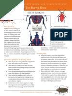 Jenkins BeetleBook Guide