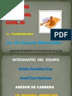 Expo Final Civil III