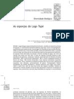 esponjas do lago tupá-AM