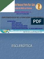 enfermedadesdelaconjuntivayescleratucienciamedic-1226975964100640-8