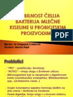 Vijabilnost ćelija bakterija mlečne kiseline u probiotičkim proizvodima
