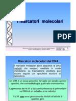 1-m-m-cdstud genetica agraria uniss