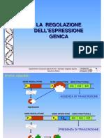 7 Regol Espressione Genica genetica agraria uniss
