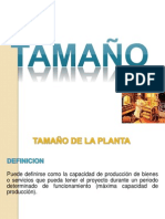 TAMAÑO - PAN INTEGRAL - AREGLADO