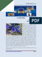 Cuento La Flor Azul...