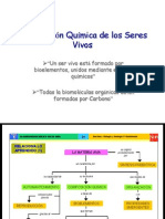 Composicion_quimica