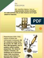 Estructura y organización de la célula procariota