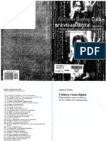 Andrew Darley - Cultura Visual Digital