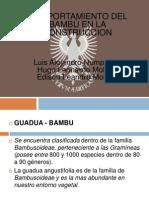 bambu - condiciones de contruccion