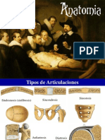 anatomia-101010144224-phpapp02