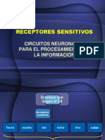 CIRCUITOS NEURONALES PARA EL PROCESAMIENTO DE LA INFORMACIÓN