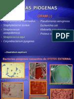 Material de Apoyo Microbiologia 2012