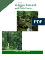 Rain+Forest+Pathfinder