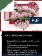 Fetal Skull and Circulation Ppt