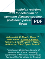 Use of Real-time Multiplex PCR
