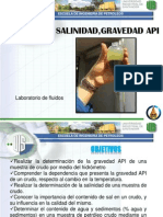 Bsw, Salinididad, API Final