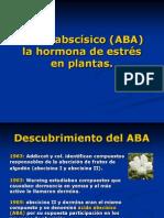 ABA FINAL 2003