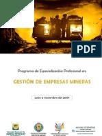 PEP Mineria