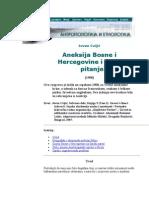 Aneksija Bosne i Hercegovine i srpsko pitanje (1908.g.) - Jovan Cvijić