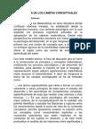 LA TEORÍA DE LOS CAMPOS CONCEPTUALES