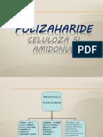 Proiect Polizaharide